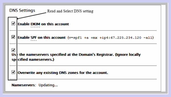 DNS Setting in Cpanel